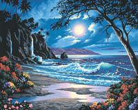 "Картина по номерам ""Берег в лунном свете"" (410x510мм; арт. 91185-DMS)"