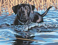 "Картина по номерам ""Холодная вода, горячее сердце"" (280х360 мм; арт. 91210-DMS)"