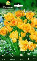 """Тюльпан махровый ранний многоцветковый """"Аквилла"""""""