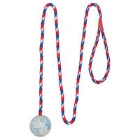 """Игрушка для собаки """"Мячик на веревке"""" (1 м; арт. 3304)"""