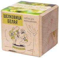 """Набор для выращивания растений """"Экокуб. Шелковица белая"""""""