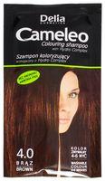 Оттеночный шампунь для волос (тон: 4,0; 40 мл)