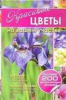 Красивые цветы на вашем участке