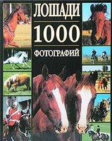 Лошади. 1000 фотографий