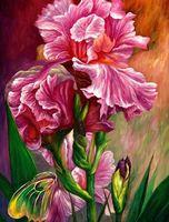 """Алмазная вышивка-мозаика """"Розовый ирис"""" (400х500 мм)"""