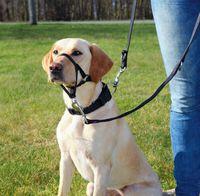 """Шлея тренировочная для собак """"Top Trainer Training Harness"""" (размер L-XL, 48-60 см, черный, арт. 13005)"""