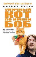 Уличный кот по имени Боб (м)