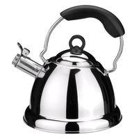 Чайник со свистком (2,5 л)