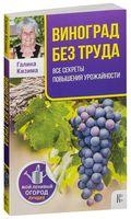 Виноград без труда. Все секреты повышения урожайности