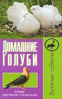 Домашние голуби. Породы, содержание, разведение