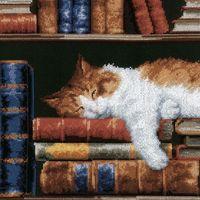 """Вышивка крестом """"Кошка, спящая на книжной полке"""" (240x330 мм)"""