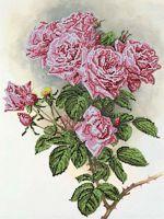 """Канва с нанесенным рисунком """"Кустовые розы"""""""
