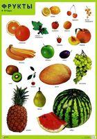 Фрукты и ягоды. Плакат