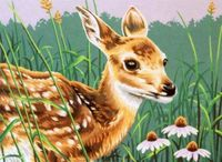 "Картина по номерам ""Олененок и цветы"" (280х360 мм; арт. DMS-73-91447)"