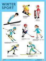 Winter Sport. Плакат