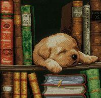 """Вышивка крестом """"Собачка, спящая на книжной полке"""" (200x260 мм)"""