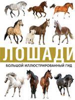 Лошади. Большой иллюстрированный гид
