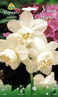 "Нарцисс махровый многоцветковый ""Уайт Марвел"""