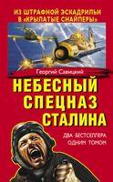 """Небесный спецназ Сталина. Из штрафной эскадрильи в """"крылатые снайперы"""""""