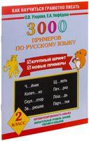 3000 примеров по русскому языку. Крупный шрифт. 2 класс