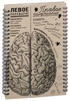 """Блокнот """"Мозги. Правое полушарие"""" (А5)"""