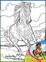 "Набор для рисования ""Лошадь"" (300х400 мм)"