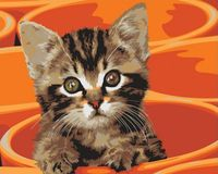 "Картина по номерам ""Котенок в кружке"" (300х400 мм)"