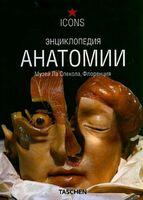 Энциклопедия анатомии