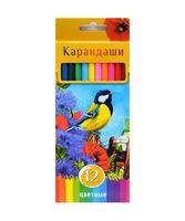 """Цветные карандаши """"Солнечный креатив"""" в картонной коробке (12 цветов)"""