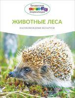 Животные леса. Насекомоядные Беларуси
