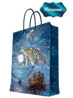 """Пакет бумажный подарочный """"Большая медведица"""" (17,8х22,9х9,8 см; арт. 43512)"""