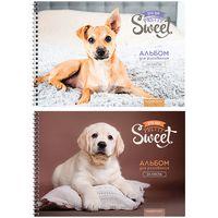 """Альбом для рисования """"Pretty Sweet"""" (А4; 24 листа; в ассортименте)"""