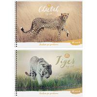 """Альбом для рисования """"Wild Animal"""" (А4; 40 листов; в ассортименте)"""