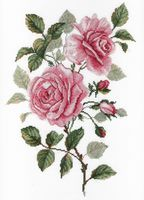 """Вышивка крестом """"Садовые розы"""" (350х250 мм)"""