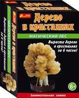 """Набор для выращивания кристаллов """"Магический лес"""" (оранжевый)"""