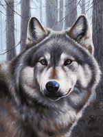 """Картина по номерам """"Волк"""" (300х400 мм)"""