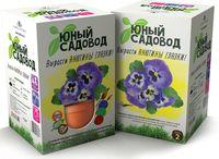 """Набор для выращивания растений """"Юный садовод. Анютины глазки"""""""