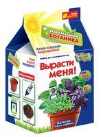 """Набор для выращивания растений """"Базилик"""""""