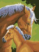 "Картина по номерам ""Лошадь и жеребенок"" (400х300 мм)"