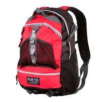 Рюкзак П909 (20 л; красный)