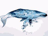 "Картина по номерам ""Акварельный кит"" (300х400 мм)"