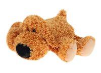 """Мягкая игрушка """"Собака Сани коричневая"""" (20 см)"""