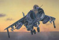 "Истребитель ""Sea Harrier FRS.1"" (масштаб: 1/72)"