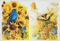 """Бумага для декупажа рисовая """"Птички и бабочки в траве"""" (210х290 мм)"""