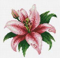 """Вышивка крестом """"Розовая лилия"""""""