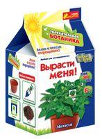 """Набор для выращивания растений """"Мелисса"""""""