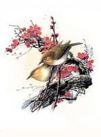 """Картина по номерам """"Птицы"""" (400х500 мм)"""