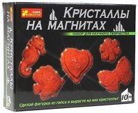 """Набор для выращивания кристаллов """"Кристаллы на магнитах"""" (красные)"""