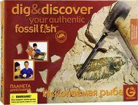 """Набор археолога """"Древние ископаемые. Рыбы"""""""