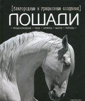 Благородные и грациозные создания - лошади
